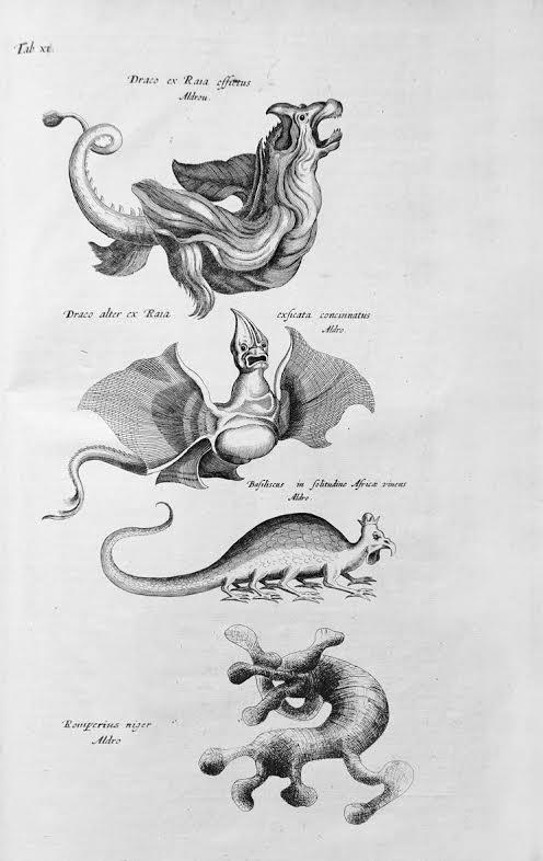 afbeeldingen Jonston 1660