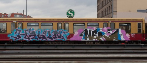 ilnicki8